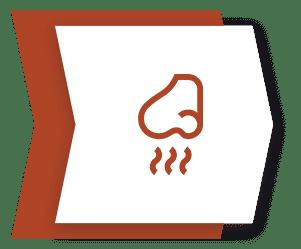bad odors icon
